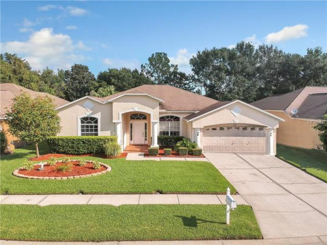 3725 Grand Forks Drive, Land O Lakes, FL 34639 (MLS #T3132310) :: Cartwright Realty