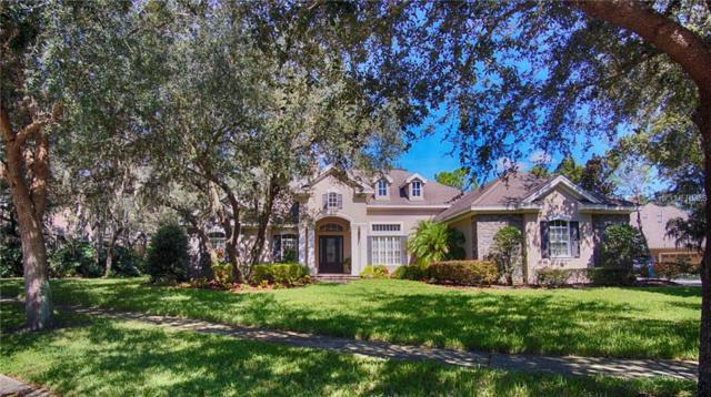 16408 Dunlindale Drive, Lithia, FL 33547 (MLS #T3132374) :: Medway Realty