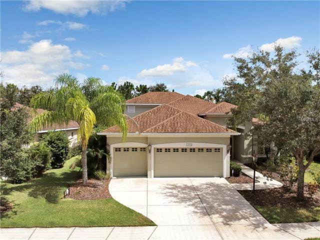 11754 Hidden Forest Loop, Parrish, FL 34219 (MLS #T3132390) :: Medway Realty