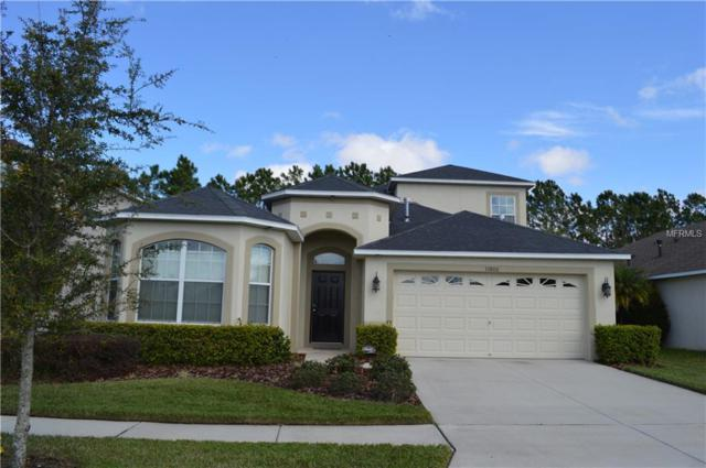 10806 Navigation Drive, Riverview, FL 33579 (MLS #T3132394) :: Medway Realty