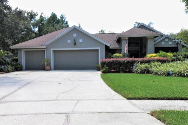 5102 Stonehurst Road, Tampa, FL 33647 (MLS #T3132398) :: Griffin Group