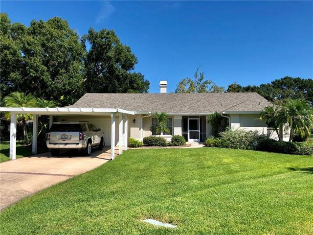 3418 E Lake Drive, Land O Lakes, FL 34639 (MLS #T3132423) :: Zarghami Group