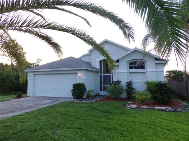 29800 Birds Eye Drive, Wesley Chapel, FL 33543 (MLS #T3132446) :: Griffin Group