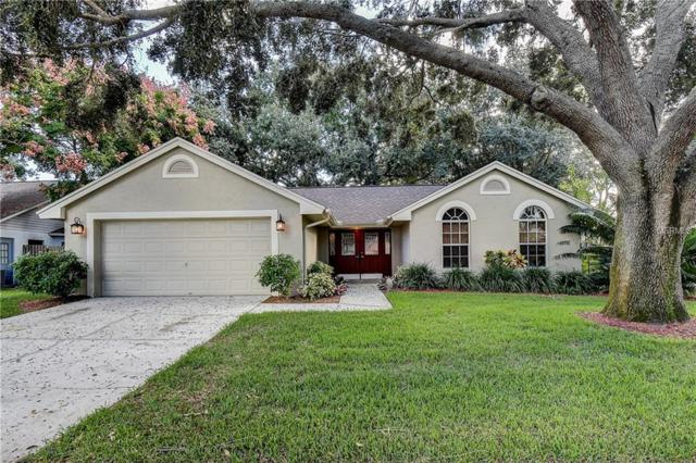 7440 Mint Julep Drive, Riverview, FL 33578 (MLS #T3132491) :: Baird Realty Group