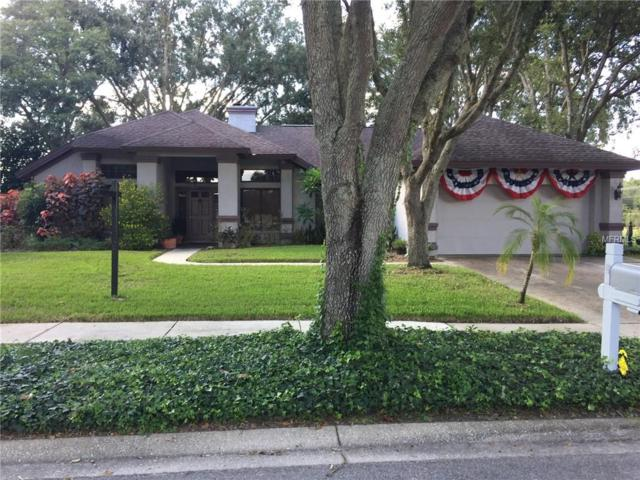 15916 Halsey Road, Tampa, FL 33647 (MLS #T3132525) :: The Light Team