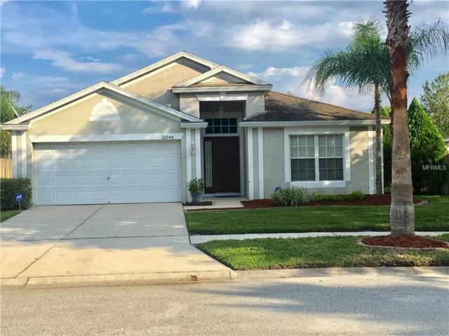 26948 Affirmed Drive, Wesley Chapel, FL 33544 (MLS #T3132555) :: Griffin Group