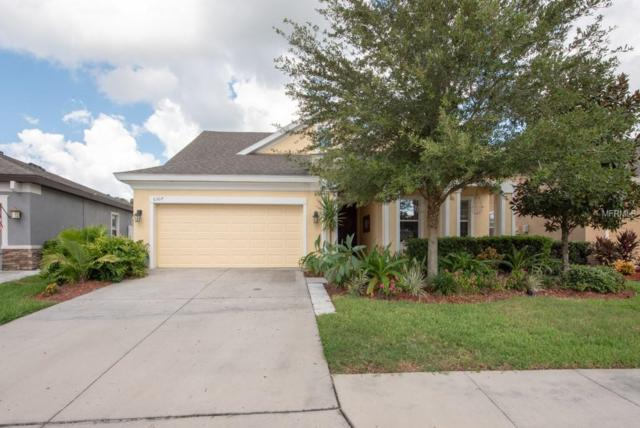 6307 Hawk Grove Court, Wesley Chapel, FL 33545 (MLS #T3132614) :: Griffin Group
