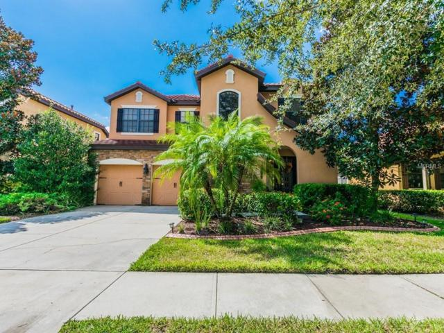 20208 Heritage Point Drive, Tampa, FL 33647 (MLS #T3132675) :: Team Bohannon Keller Williams, Tampa Properties