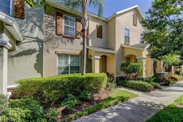 12614 Carlby Circle, Tampa, FL 33626 (MLS #T3132770) :: Griffin Group