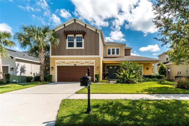 8804 Bella Vita Circle, Land O Lakes, FL 34637 (MLS #T3132782) :: Team Bohannon Keller Williams, Tampa Properties