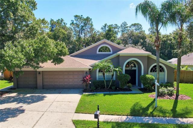 10613 Chambers Drive, Tampa, FL 33626 (MLS #T3132852) :: The Duncan Duo Team