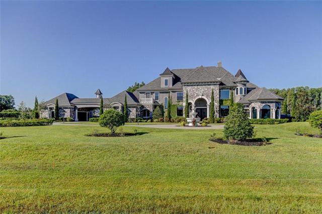 17324 Ballmont Park Drive, Odessa, FL 33556 (MLS #T3132875) :: Griffin Group