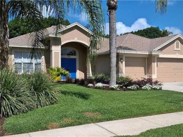 510 Equine Drive, Tarpon Springs, FL 34688 (MLS #T3133017) :: RE/MAX CHAMPIONS