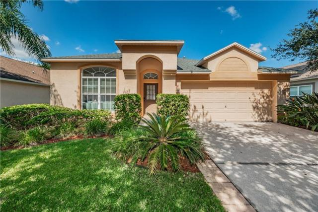 11716 Derbyshire Drive, Tampa, FL 33626 (MLS #T3133228) :: Team Bohannon Keller Williams, Tampa Properties