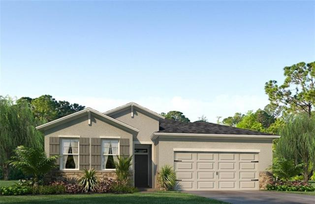 1143 Pipestone Place, Wesley Chapel, FL 33543 (MLS #T3133266) :: The Duncan Duo Team