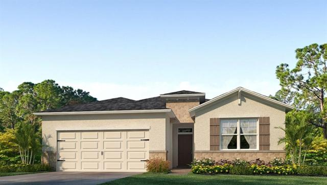 1140 Pipestone Place, Wesley Chapel, FL 33543 (MLS #T3133316) :: The Duncan Duo Team