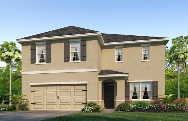12014 Ledbury Commons Drive, Gibsonton, FL 33534 (MLS #T3133383) :: The Light Team