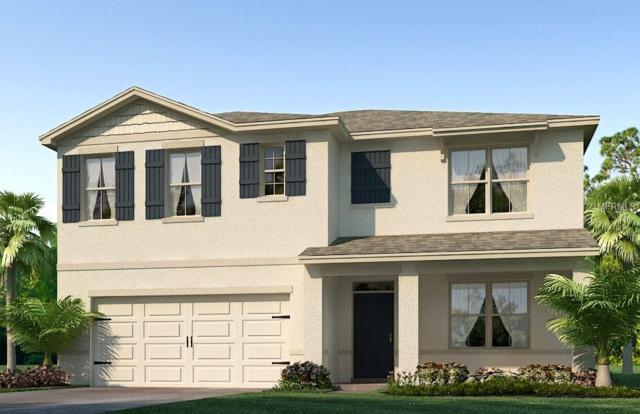 12006 Gillingham Harbor Lane, Gibsonton, FL 33534 (MLS #T3133389) :: The Light Team