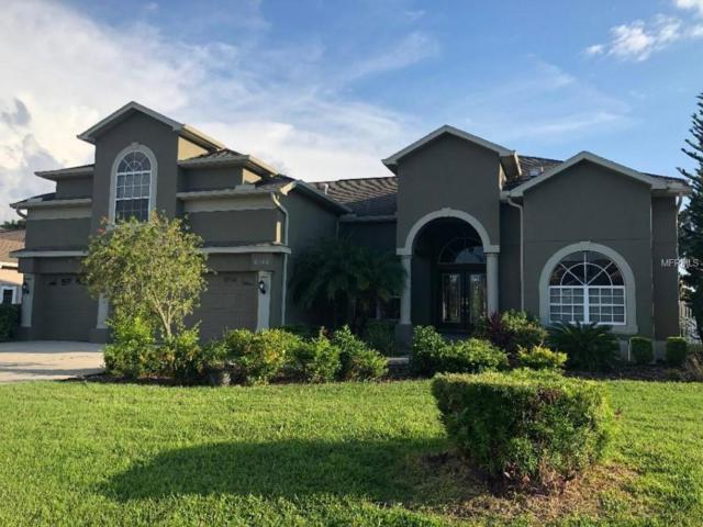 6146 Rockross Avenue, New Port Richey, FL 34655 (MLS #T3133395) :: Mark and Joni Coulter | Better Homes and Gardens