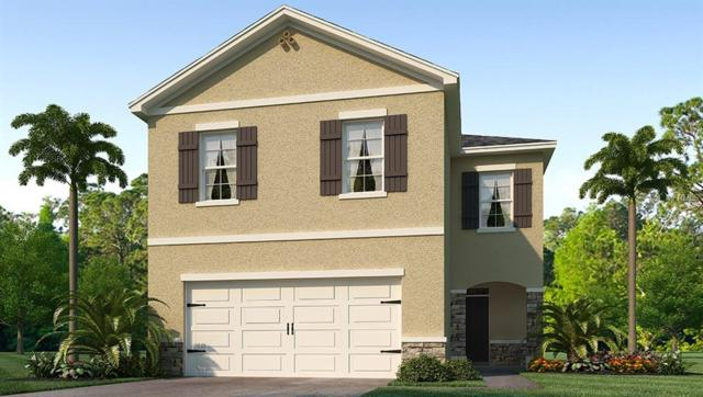 908 Ashentree Drive, Plant City, FL 33563 (MLS #T3133431) :: The Duncan Duo Team