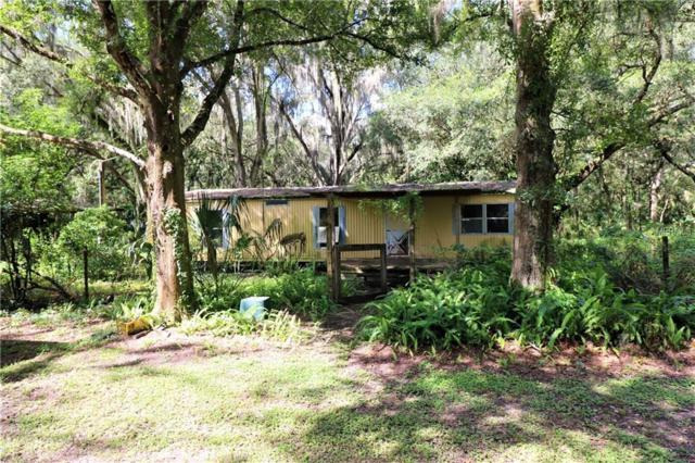 6309 Quail Meadow Road, Plant City, FL 33565 (MLS #T3133554) :: Mark and Joni Coulter   Better Homes and Gardens