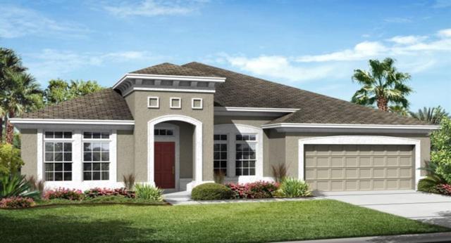3348 Sagebrush Street, Harmony, FL 34773 (MLS #T3133618) :: Godwin Realty Group