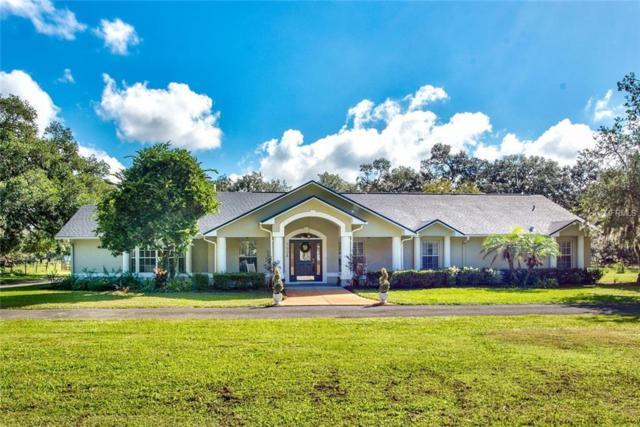 3904 Keene Road, Plant City, FL 33565 (MLS #T3133726) :: Welcome Home Florida Team