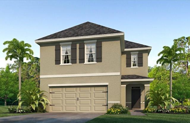 11146 Leland Groves Drive, Riverview, FL 33579 (MLS #T3133751) :: The Light Team