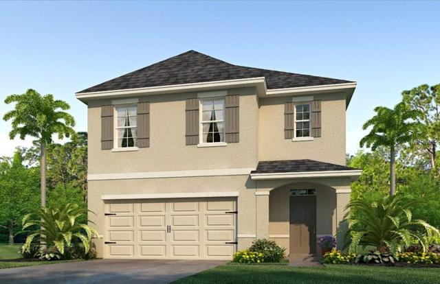 11154 Leland Groves Drive, Riverview, FL 33579 (MLS #T3133759) :: The Light Team