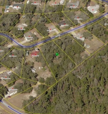 5303 Azalea Circle, Dade City, FL 33523 (MLS #T3133761) :: The Duncan Duo Team
