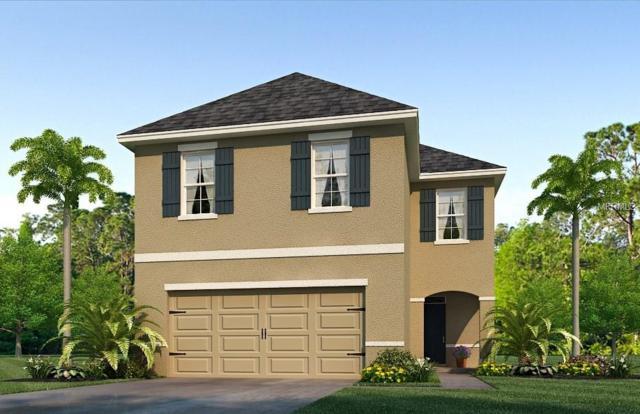 11152 Leland Groves Drive, Riverview, FL 33579 (MLS #T3133781) :: The Light Team