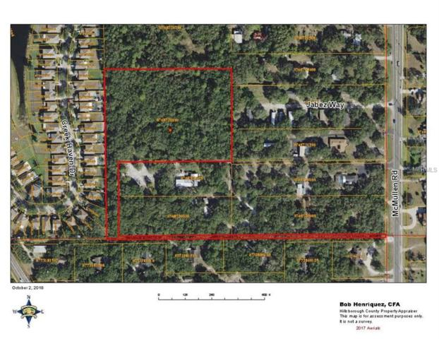 Mcmullen Road, Riverview, FL 33569 (MLS #T3134029) :: Griffin Group