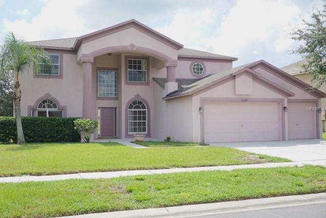 16223 Muirfield Drive, Odessa, FL 33556 (MLS #T3134204) :: RE/MAX CHAMPIONS