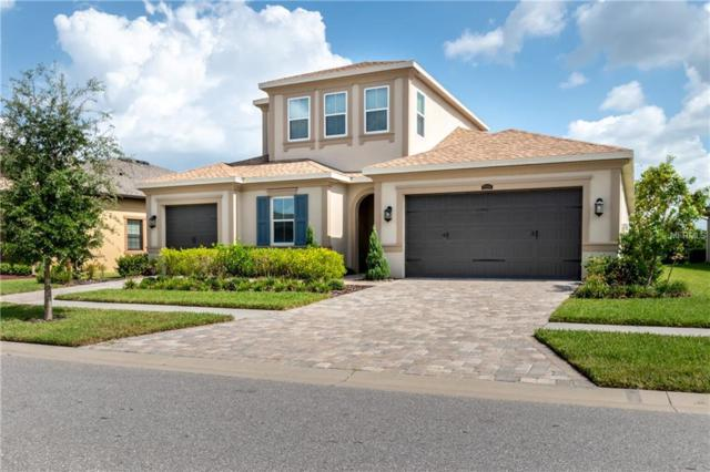 13224 Fawn Lily Drive, Riverview, FL 33579 (MLS #T3134295) :: The Duncan Duo Team