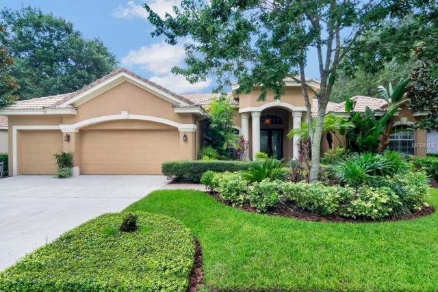 Address Not Published, Lithia, FL 33547 (MLS #T3134782) :: Team Bohannon Keller Williams, Tampa Properties