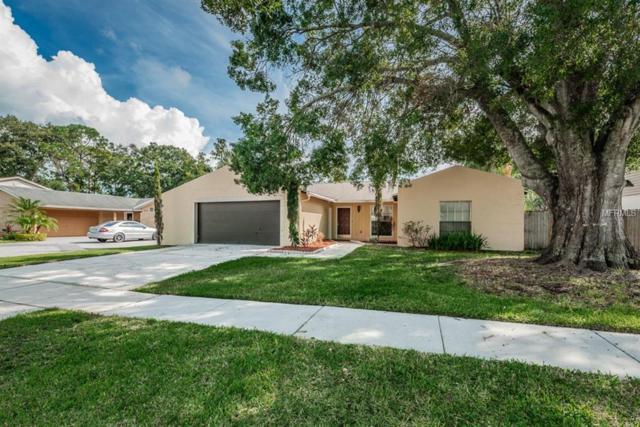 7012 Edenbrook Court, Tampa, FL 33634 (MLS #T3134899) :: Medway Realty