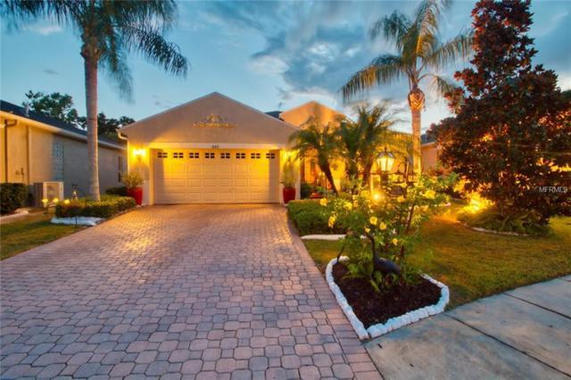 807 King Leon Way, Sun City Center, FL 33573 (MLS #T3134970) :: Medway Realty