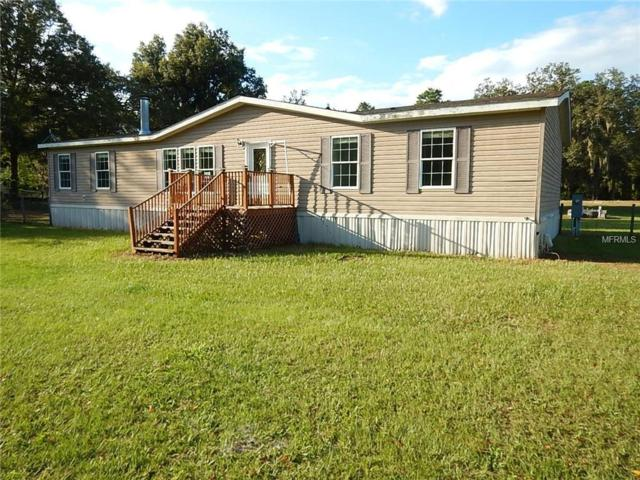 17725 Bosley Drive, Spring Hill, FL 34610 (MLS #T3134991) :: The Duncan Duo Team