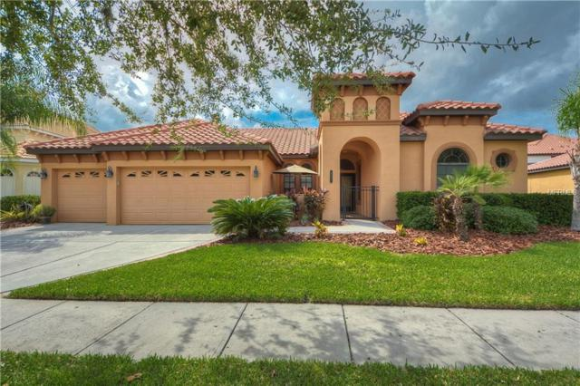 8321 Windsor Bluff Drive, Tampa, FL 33647 (MLS #T3135011) :: Medway Realty