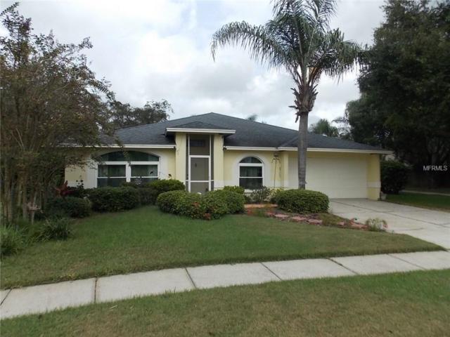 4129 Barret Avenue, Plant City, FL 33566 (MLS #T3135020) :: Dalton Wade Real Estate Group