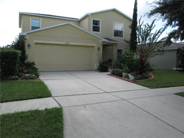 30818 Temple Stand Avenue, Wesley Chapel, FL 33543 (MLS #T3135054) :: The Duncan Duo Team