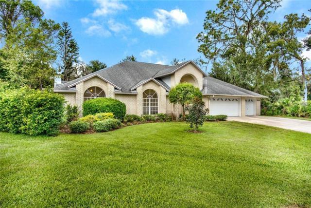 3906 Fairlea Circle, Plant City, FL 33566 (MLS #T3135095) :: Dalton Wade Real Estate Group