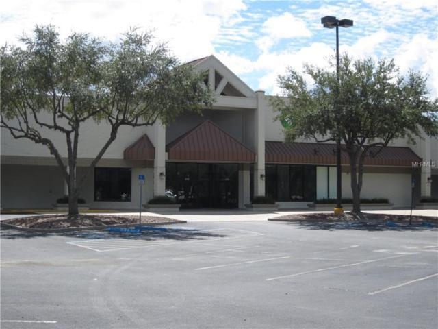 8702 Hunters Lake Drive, Tampa, FL 33647 (MLS #T3135109) :: The Duncan Duo Team