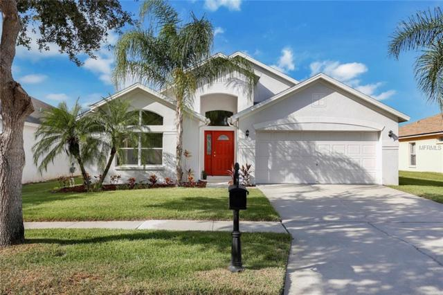 9962 Stockbridge Drive, Tampa, FL 33626 (MLS #T3135115) :: The Duncan Duo Team