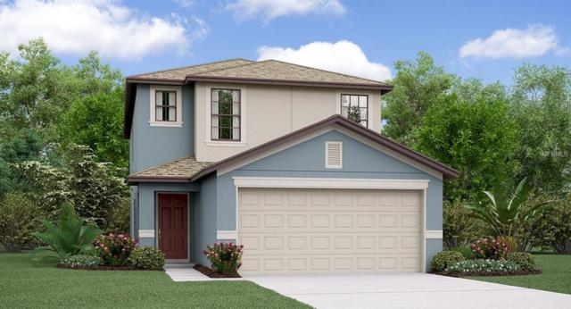 7422 Clary Sage Avenue, Tampa, FL 33619 (MLS #T3135142) :: The Light Team