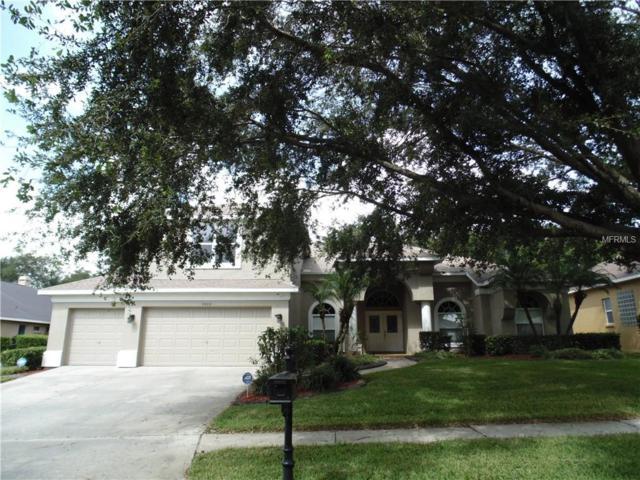 2805 Norwood Hills Lane, Valrico, FL 33596 (MLS #T3135199) :: Dalton Wade Real Estate Group