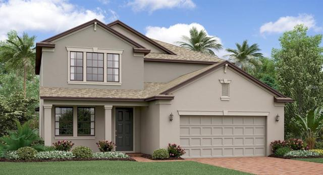 13242 Orca Sound Drive, Riverview, FL 33579 (MLS #T3135218) :: The Duncan Duo Team