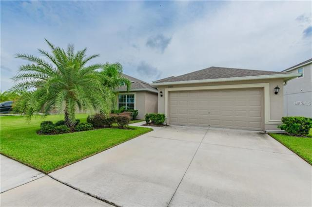 11602 Mansfield Point Drive, Riverview, FL 33569 (MLS #T3135230) :: Mark and Joni Coulter | Better Homes and Gardens