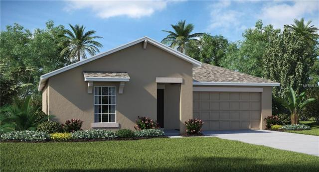 10254 Strawberry Tetra Drive, Riverview, FL 33578 (MLS #T3135348) :: The Duncan Duo Team