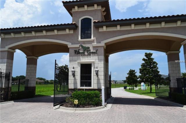 0 Brice Tree, Lithia, FL 33547 (MLS #T3135396) :: Dalton Wade Real Estate Group